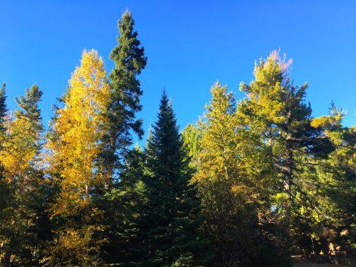 Tuscarora Lodge in the autumn season