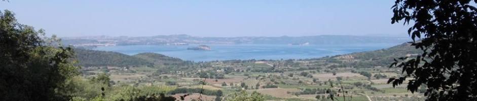 Da Montefiascone alle rive del lago di Bolsena lungo la valle Perlata
