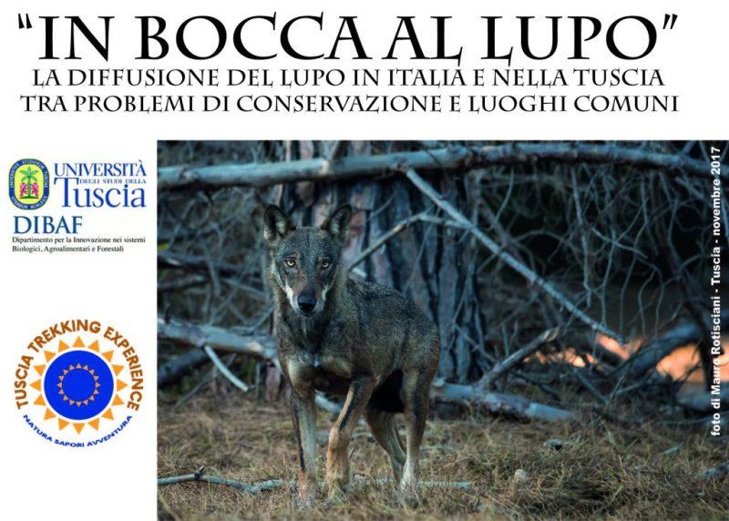 lupo_fb