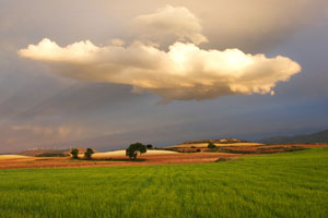 El patrimonio cultural y natural de Tarazona, en una exposición organizada para este verano