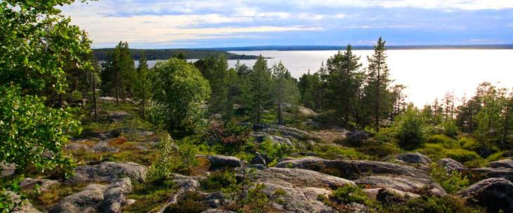 Reserva natural de la península de Bjuröklubb