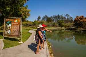 Brasil y su apuesta por el turismo senior