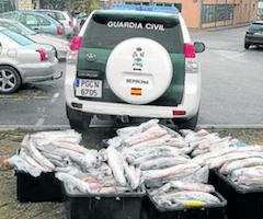 Batalla contra la pesca ilegal en Mequinenza