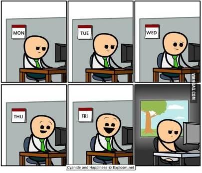 vida del programador