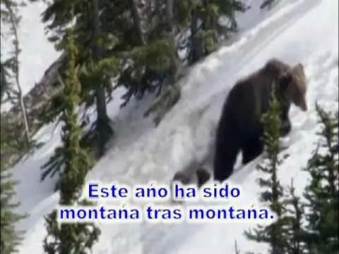 Este año ha sido, montaña tras montaña – Roger Osorio – #musicacristiana #diadelseñor