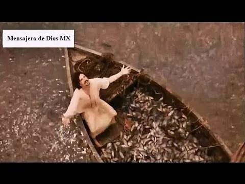 Jesus y la Pesca Maravillosa   Los Milagros de Jesus #1