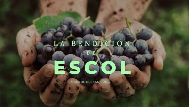 Photo of La bendición de Escol – Apóstol German Ponce