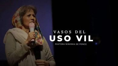 Photo of Vasos de uso vil – Ninoshka de Ponce