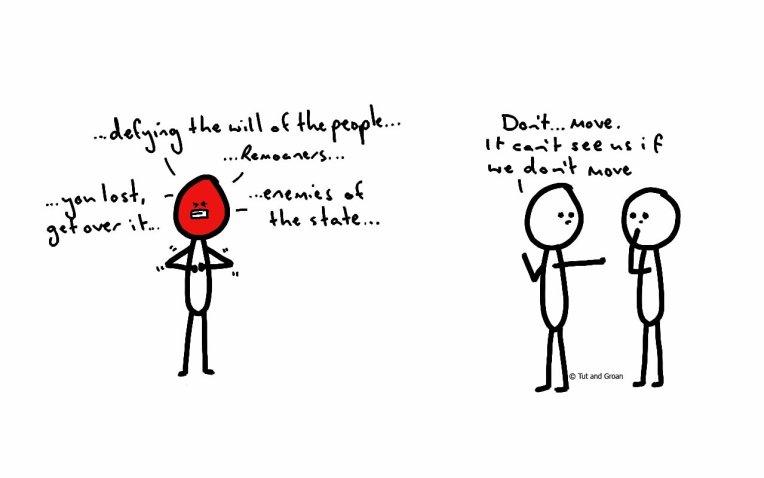 Tut and Groan The Fury of Brexiteers cartoon