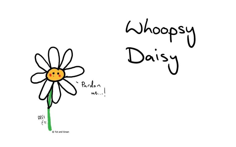 Tut and Groan Whoopsy Daisy cartoon
