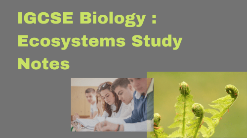 small resolution of IGCSE Biology : Ecosystems Study Notes - Tutopiya