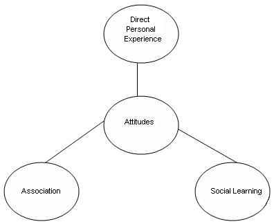 Sources of Attitudes Assignment Help Homework Help Online