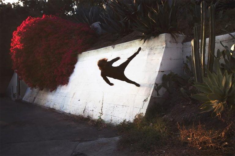 La gravità e le sue difficoltà: le foto di Mike Dempsey 9