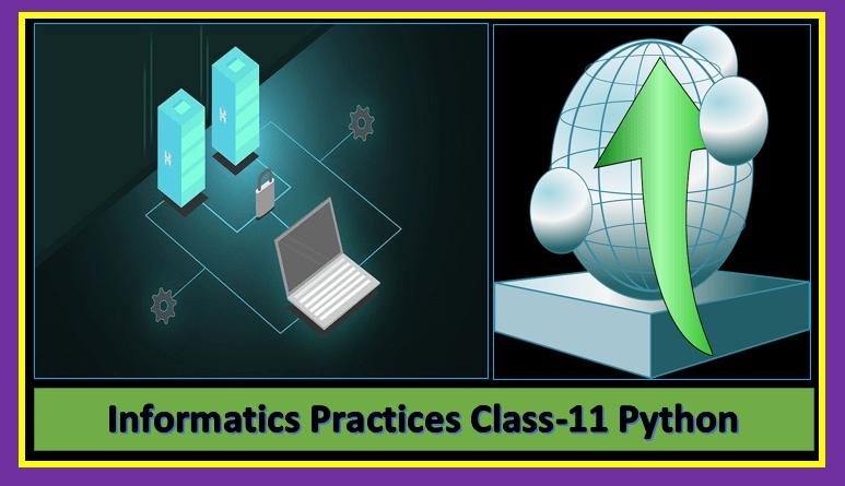 Informatics practices class-11 Python