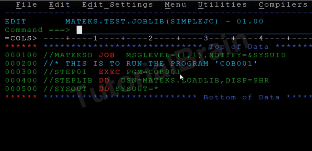 TutorialBrain-Sample RUN JCL to execute the HELLO WORLD COBOL Program