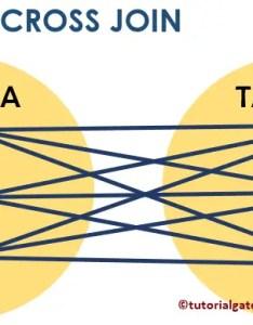 Sql cross join chart also rh tutorialgateway