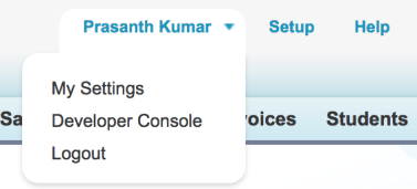 Salesforce Developer Console