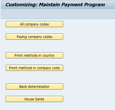 Automatic Payment Program Run in SAP