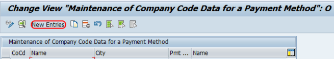 payment method for company code in SAP