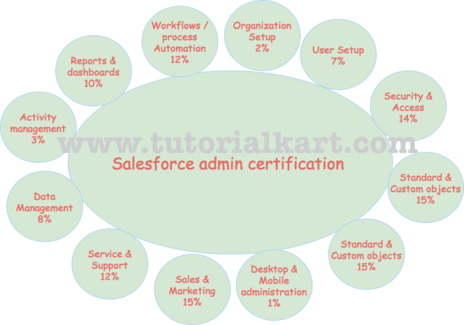 Salesforce certification guide