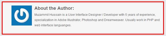 Add About Author Under Each Post – WordPress 1