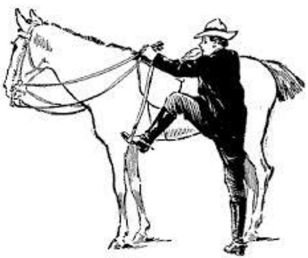 Horse Racing How to Ride?