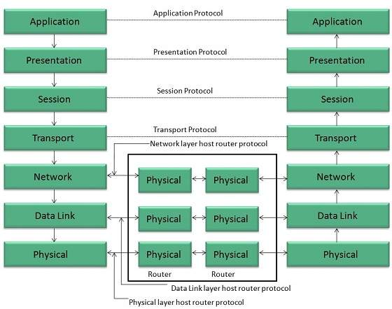 Internet Reference Models