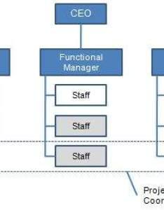 also organizational structures rh tutorialspoint