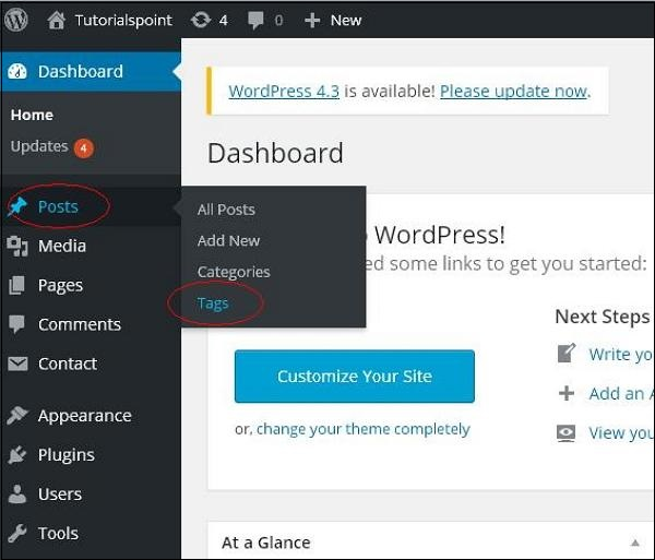 WordPress Delete Tags