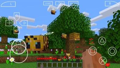 Minecraft PPSSPP