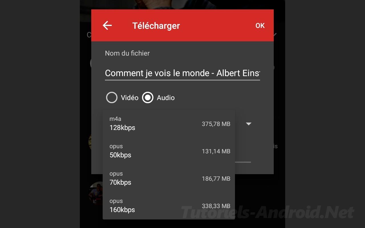 Télécharger Livre Audio de depuis Youtube avec NewPipe