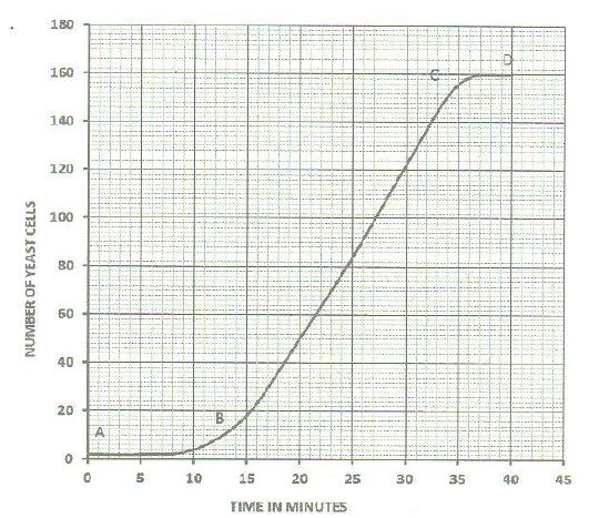 The graph below represents the increase in the number of