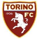 Logo Torino 200