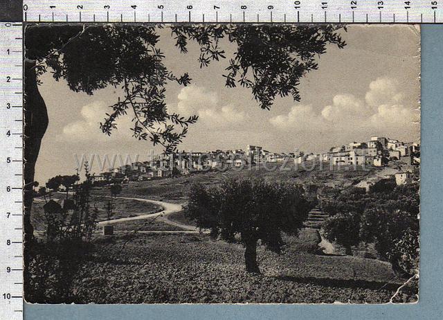 Campobasso cartoline postali  TuttoCollezioniit il sito per collezionisti