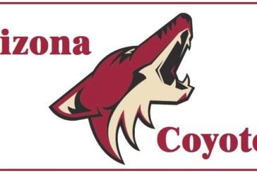 Focus NHL: alla scoperta degli Arizona Coyotes versione 2018-2019