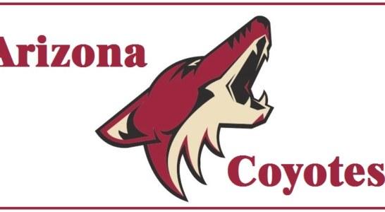 Qui NHL: alla scoperta degli Arizona Coyotes versione 2017-2018