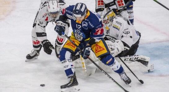 National League Svizzera: regular season allo Zugo, da stasera i play-off