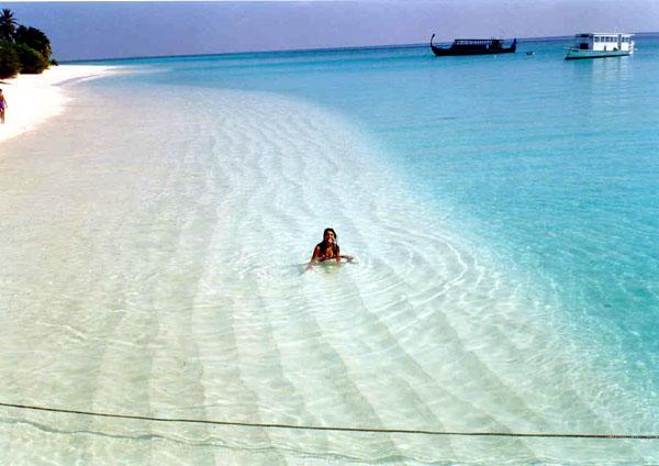 Foto  Photo  informazioni Isole Maldive Palm Beach
