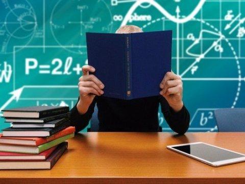 scuola naspi docenti INPS