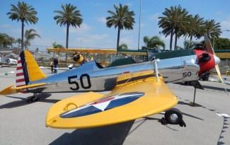 Un Silver & Yellow PT22 un aereo d'epoca biposto con cui ha avuto un incidente a Venice