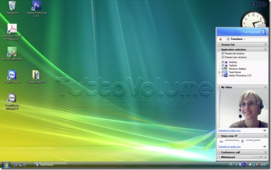 TeamViewer 5 video chat