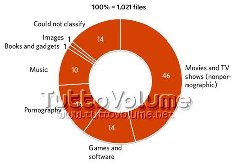 percentuali_torrent_per_tipo