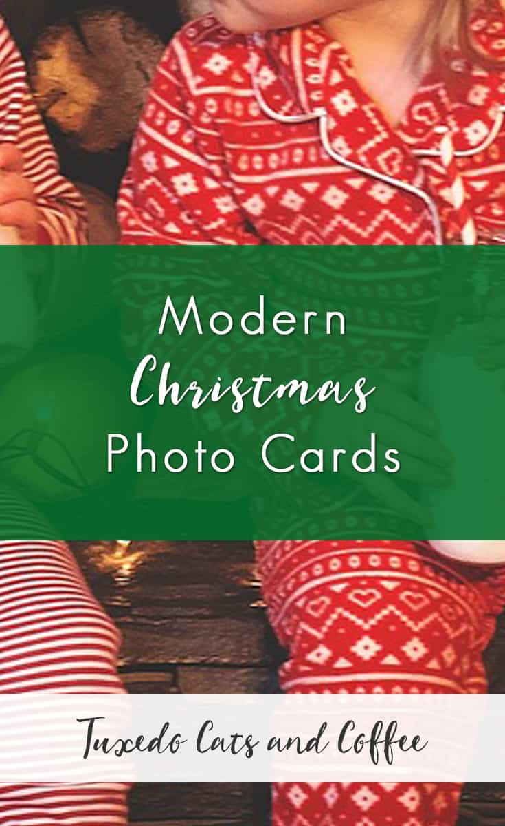 Modern Christmas Photo Cards Tuxedo Cats And Coffee