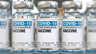 Vaccine picture