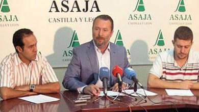 Photo of ASAJA PIDE QUE EN NAVIDAD SE CONSUMAN PRODUCTOS DE CASTILLA Y LEÓN