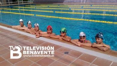 Photo of 7 NADADORES DEL CD BENAVENTE CLASIFICADOS PARA EL TERRITORIAL INFANTIL-JUNIOR