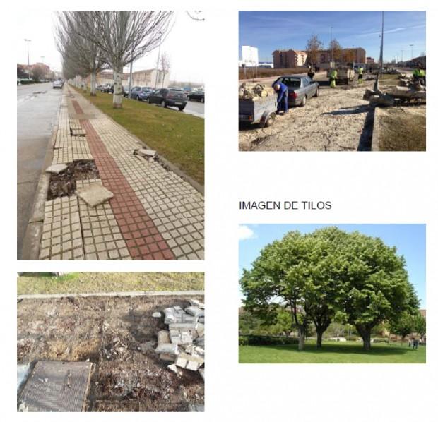 Benavente concejalia de urbanismo 12