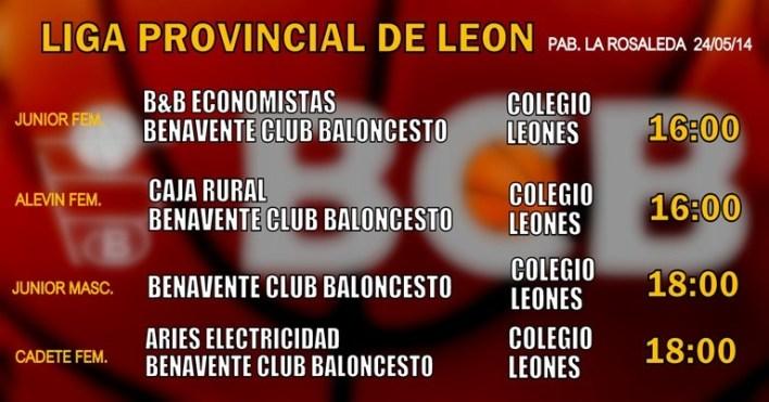 liga provincial leon