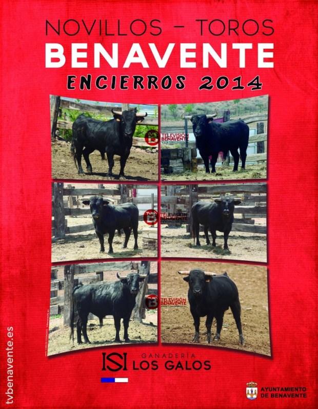 toros novillos encierros toro benavente 2014 - ganaderia los galos