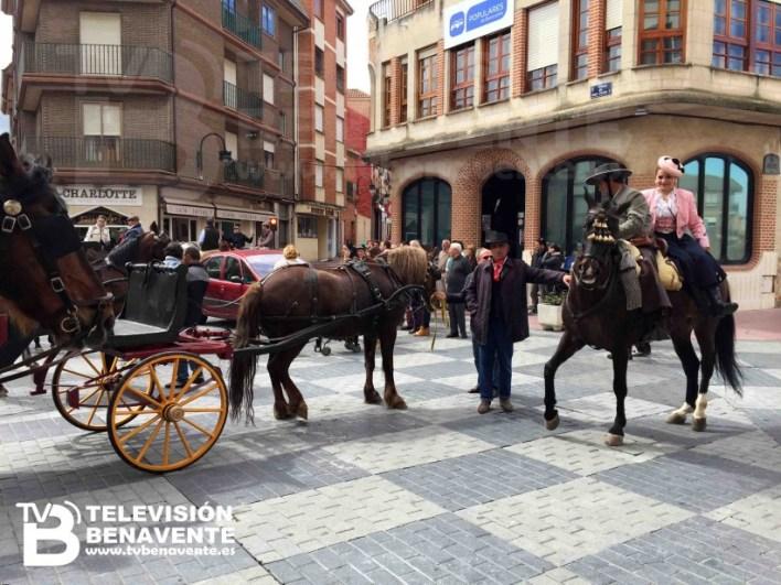 dia del caballo 2015 Benavente 1